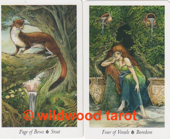 Wildwood Tarot | Page of Bows | Four of Vessels | Tarot Thrones
