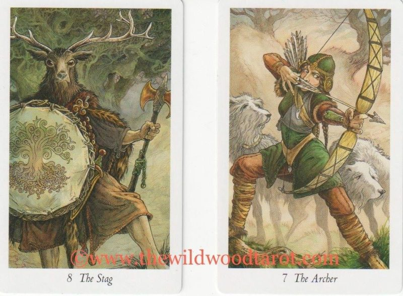 Stag and Archer from the Wildwood Tarot
